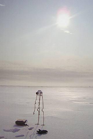 Panamarenko Noordpool-Arlikoop  klik hier